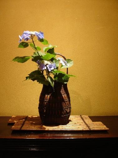 benjowski tee japanische teezeremonie chanoyu. Black Bedroom Furniture Sets. Home Design Ideas